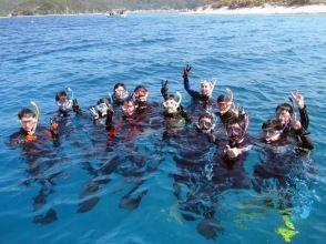 【沖縄・座間味】ダイビングライセンス取得!慶良間諸島の美しい座間味の海でライセンスを取ろう!の画像