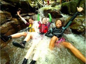 【沖縄・やんばるの森】童心に返って大冒険!ウォータージャングルアドベンチャーの画像