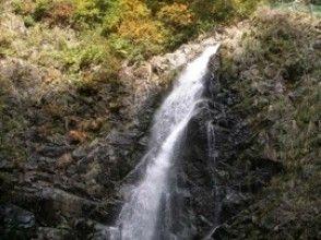 【青森・白神山地】トレッキング/ブナ林散策道&暗門第3の滝コースで神秘の自然を五感で感じる!