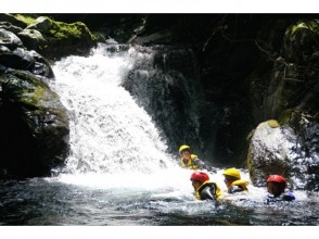 【Nara · Yoshino】 Family Canyon ※ Participation requirement First grade primary school student