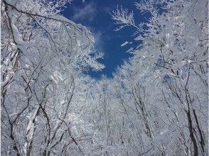 [青森八甲近Tsutanuma]雪鞋遊3小時,圖像30分鐘