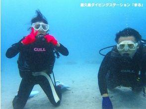 【鹿児島・屋久島】ダイビング初心者&お一人様歓迎!体験ダイビング(1ダイブコース)の画像