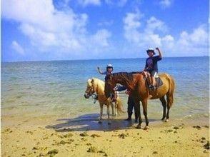 【沖縄・宮城島】馬に乗ってビーチをのんびり散歩しよう!ビーチ乗馬(60分コース)