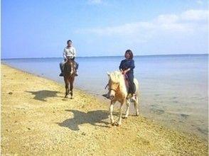 【沖縄・宮城島】乗馬をたっぷり楽しめます!ビーチ乗馬と山歩き乗馬(120分コース)