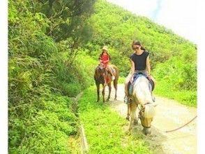 【沖縄・宮城島】森林を楽しく乗馬しよう!林トレッキング(60分プラン)の画像