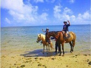 【沖縄・宮城島】馬に乗ってビーチをたっぷり散歩しよう!ビーチ乗馬(90分プラン)の画像