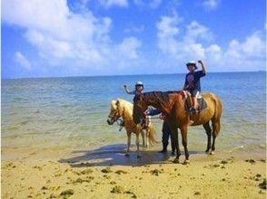 【沖縄・宮城島】乗馬で海と林を楽しもう!ビーチと林トレッキング(90分コース)
