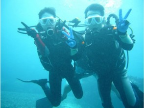 [Okinawa Miyakojima] experience diving S course tropical fish and swim tour with lunch