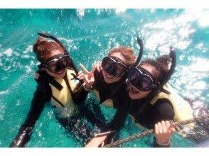 [Okinawa Miyakojima] snorkeling SS course tropical fish snorkel tour leisurely 3 hours