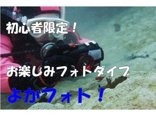 【熊本・天草】水中写真に初挑戦『よかフォト!』のプラン詳細
