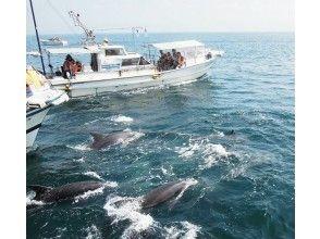 """[熊本/天草]釣魚真品!用水下麥克風聽海豚! """"海豚觀賞和釣魚的經驗"""""""