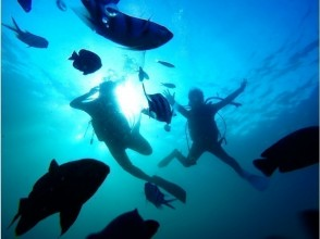 【沖縄・青の洞窟・恩納村】貸切ツアー青の洞窟ビーチ体験ダイビング 写真&動画データ無料プレゼント付♪の画像