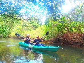 [沖繩西表島]紅樹獨木舟&徒步瀑布旅遊及旅遊Yubujima(與水牛車車票)的圖像