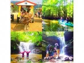 [沖繩西表島]紅樹獨木舟叢林探索瀑布旅遊及旅遊Yubujima當然祕境