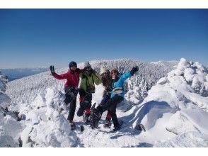 [Nagano / Yatsugatake] To Kita Yatsugatake / Mt. Shimakare! Snowshoes trekking! With photo service