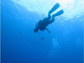 【北海道・支笏湖】オープンウォーターダイバーコース【ダイビングライセンス講習】