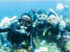 【静岡・熱海】少人数制で安心!Let's 体験ダイビングの画像