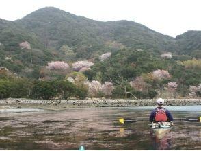 【徳島・鳴門市】★春季限定★ウチノ海で桜シーカヤックツアー