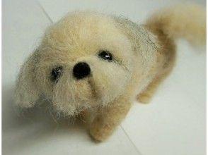 [北海道空知]羊毛吉祥物製作經驗; 3小時的課程,你最喜歡的動物吉祥物形象製作