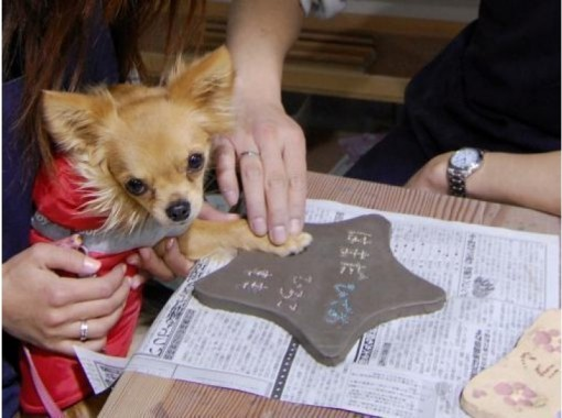 [Shizuoka ・ Izukogen-Doggy plate making] in the footsteps of children's memorial notes and pet dog! Plate making experienceの紹介画像