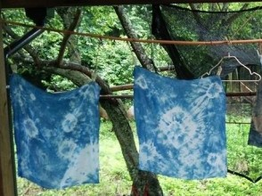 【Nagasaki · plant dyeing】 I am deeply impressed with the color of nature! An image of dyeing with seasonal plants