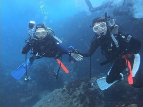 [Izu Oshima, for beginners! The image of diving (3 to 4 hours)