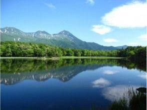 【北海道・知床】トレッキング 世界自然遺産知床・知床五湖ガイドウォークの画像