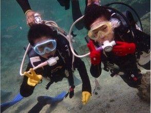 8歳9歳からの沖縄☆キッズチャレンジ体験ダイビング 魚の餌付け&写真撮影付きの画像