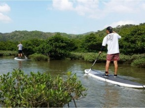 【Okinawa · Kunigami Village】 Leisurely mangrove SUP cruising at the northern part of Okinawa main island designated as Yanbaru National Park