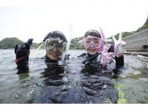 【熊本・天草  初心者向き】体験ダイビング(1ダイブ)+イルカウォッチング 2名様~の割引価格!】の画像