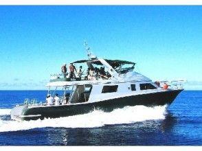 【那覇発⇔国立公園ケラマ諸島】 大型クルーズ船をチャーターしてワンランク上の沖縄遊びはいかが?の画像