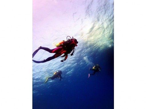 DivingShop likklemore(ダイビングショップリコモ)