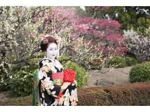 Image of a full-fledged maiko experience at the [Kyoto Higashiyama-ku] established a dry goods store (up to shooting from the dressing!)