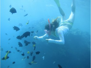 【Northern Okinawa · Skin diving / submarine】 If you are snorkeling wearing a life jacket it's enough for you! Image of