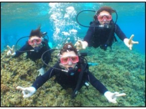 【沖縄・那覇/ダイビング】沖縄で海体験!体験ダイビングの画像