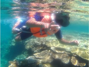 【Okinawa North · Kunigami Village】 Family · Couples support! Feel free to snorkel from the beach