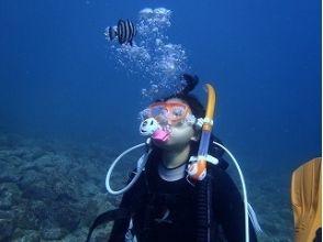 【静岡・伊豆】感動の水中散歩を楽しもう!体験ダイビングコース(平日コース)の画像