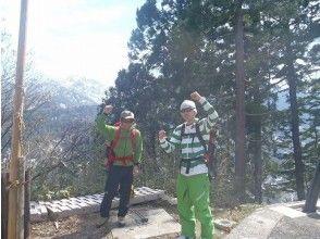 【富山・立山めぐり】トレッキング(美女平コース)の画像