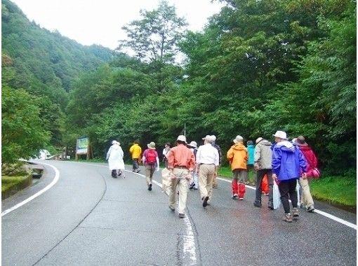 【富山・立山】立山めぐりトレッキング(称名滝コース)落差350m!名瀑・称名滝ガイドウォーク