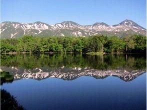 【北海道・知床】トレッキング知床五湖と原生林を巡る「知床一日自然ガイドツアー」の画像