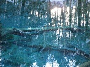 【北海道・知床】スノーシューで行く神の子池ツアーの画像