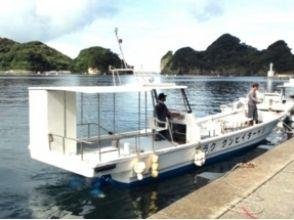 【茨城県】ダイビングウミウシの宝庫!茨城の海で潜ろう!