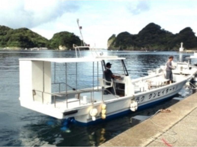 [Ibaraki Prefecture】 Diving A treasure trove of sea slugs! Ibaraki Let's dive in the sea!の紹介画像