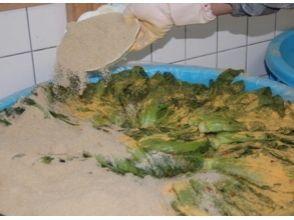 การใช้พืช [Saga Saga] ฤดูกาลพยายามที่จะท้าทายที่เต็มเปี่ยมผักดองทำ! ภาพของ