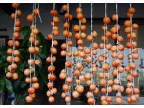 在[佐賀佐賀]花園鮮柿,柿餅製作體驗!