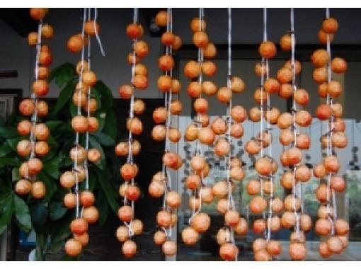 【佐賀・佐賀市】採れたての柿で、干し柿作り体験!