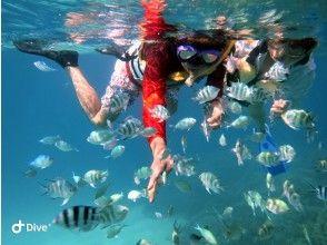[冲绳/碧濑] 很多美丽的珊瑚和鱼♪推荐给家庭的浮潜计划! !!