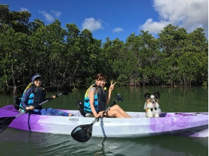 [Okinawa ・ Ishigaki island 】 With your dog! Mangrove canoe (2 hours)