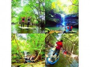 [沖繩西表島]半天紅樹林SUP(薩普)和叢林探險的祕境的瀑布遊覽路線