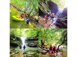 [沖繩西表島]半天獨木舟的紅樹林和叢林探險的祕境的瀑布遊覽路線